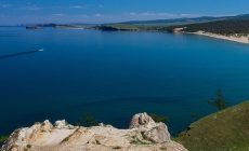 На берегу Байкала найдены останки ископаемой тропической птицы