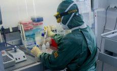 Биотехнологи обнаружили полностью блокирующее коронавирус антитело