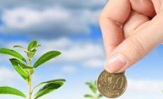 Планируется принятие закона о развитии инвестиционной деятельности