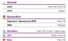 С нового сезона НБА уйдет на MEGOGO. Напоминаем, где легально смотреть спорт в России: лиги, каналы и сервисы