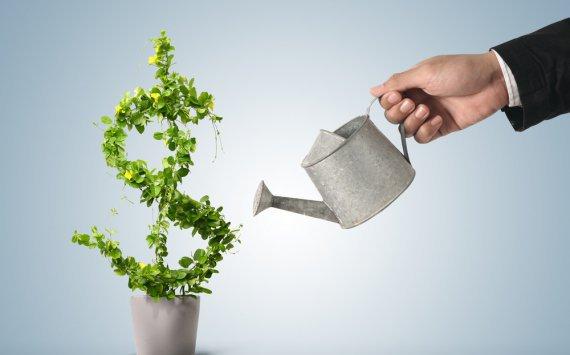 Что стоит учитывать при выборе инвестиционной компании?